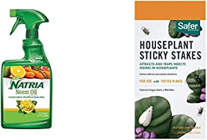Natria 706250A Neem Oil Spray for Plants Pest Organic Disease Control, 24-Ounce, Ready-to-Use & Safer Brand SF5026 Houseplant Sticky Stakes Insect Traps, 1 Pack, One Color