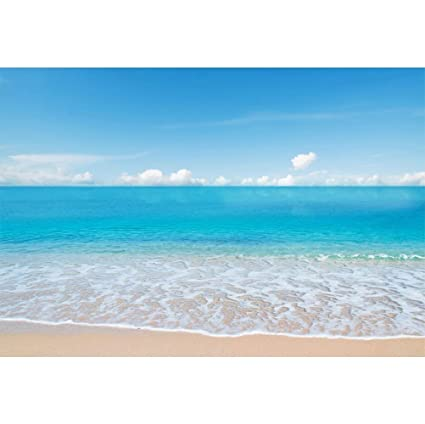 Amazoncom Szzwy 10x7ft Summer Seaside Beach Scenic Vinyl