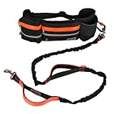 """Hands Free Dog Leash, Dog Walking and Training Belt with Shock Absorbing Bungee Leash for up to 180lbs Large Dogs, Phone Pocket and Water Bottle Holder, Fits All Waist Sizes From 28"""" to 48"""",Orange"""
