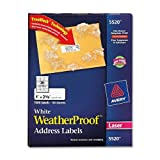 Avery White WeatherProof Labels for Laser Printers, 1 x 2.62 Inch, Box of 1500 (5520), Office Central