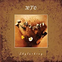 Skylarking: Corrected Polarity Edition by Xtc [Music CD]