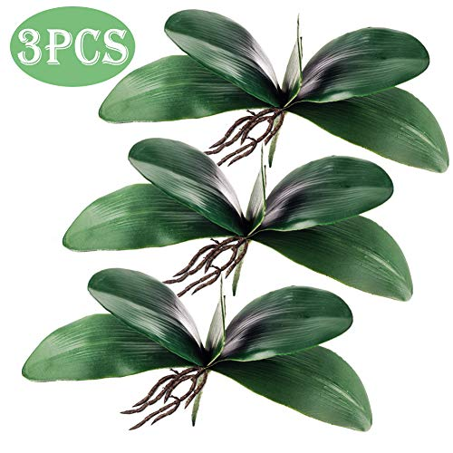 - Molliy Phalaenopsis Orchid Leaves Real Latex Touch Plants Arrangement, 3 Pieces