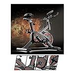 51LfRLufP6L. SS150 WANXJM Spin Bike per Ciclismo al Coperto Professionale, Ultra-Silenzioso Esercizio a casa per Bicicletta Sport Attrezzature per Il Fitness Dispositivo di Allenamento per Aerobica, Nero