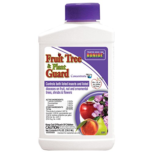 fruit tree and plant guard - 3