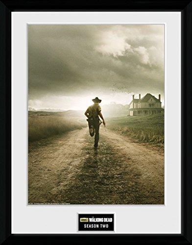 1art1 100335 The Walking Dead - Season 2 Gerahmtes Poster Für Fans Und Sammler 40 x 30 cm