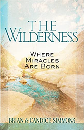The Wilderness: Where Miracles Are Born (Passion Translation)