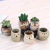 #7: Mini 6PCS Owl Pot Ceramic Flowing Glaze Base Serial Set Succulent Plant Pot Cactus Plant Pot Flower Pot Container Planter Bonsai Pots With A Hole By Weierken.