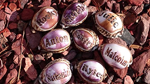 'Tanner' Personalized Seashells Engraved. Names Engraved on a seashell - Hand Made - All Natural - Say It On A Shell
