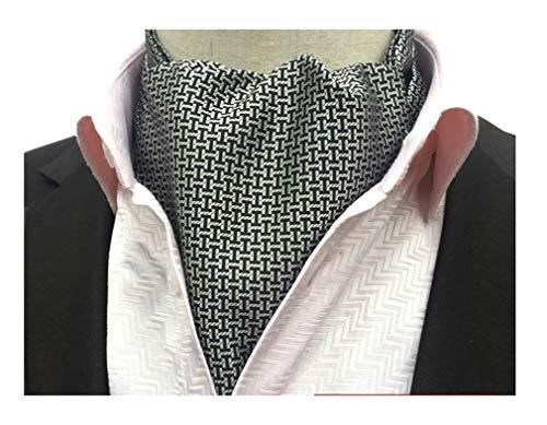 Secdtie Men's Black Grey Comfort Gift Silk Cravat Ties Woven Casual Ascot 10