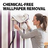 Wagner Spraytech 0282036 715 Power, Chemical Free