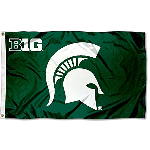 MSU Spartans Big 10 3x5 Flag