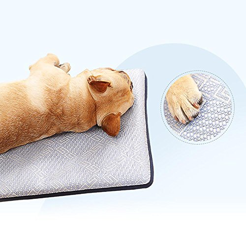 Buy cooling mat for dogs