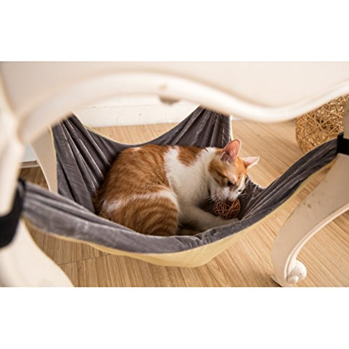 General Cama de Hamaca para Gatos - Suave y cómoda Hamaca de Mascota con Silla para Gatito, hurón, Perrito o Mascota (Caqui): Amazon.es: Hogar