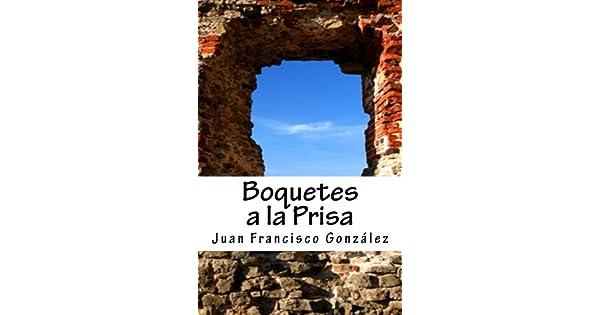 Descargar Boquetes a la prisa: poemas terrenales PFD gratis