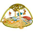 Skip Hop Giraffe Safari Activity Gym, Multi