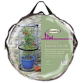 Tierra Garden 50-6070 Haxnicks Pop Up Tomato Cloche