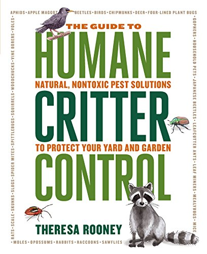 Buy yet chemical free insect control