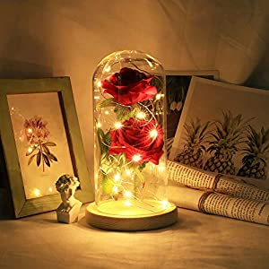 Warmmie Beauty and The Beast Preserved Fresh Rose Flower Light in a Glass Romantic Wooden Base Valentine's Day Birthday Anniversary 1