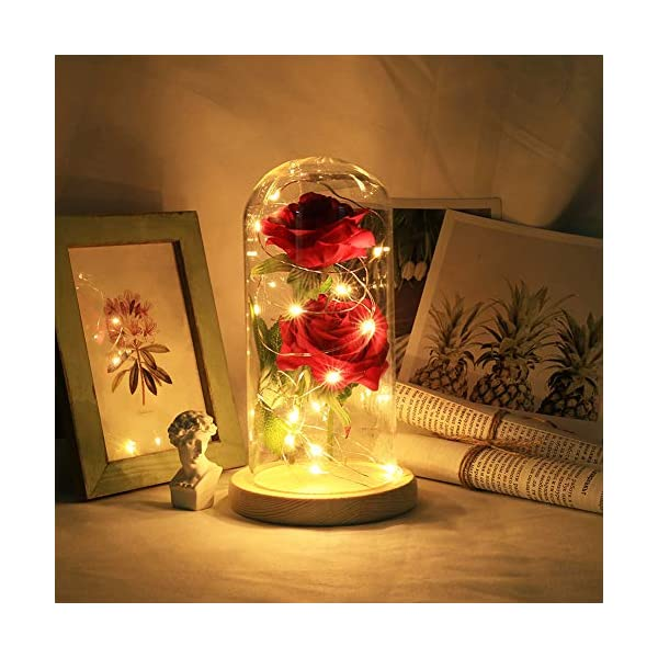 Warmmie-Beauty-and-The-Beast-Preserved-Fresh-Rose-Flower-Light-in-a-Glass-Romantic-Wooden-Base-Valentines-Day-Birthday-Anniversary