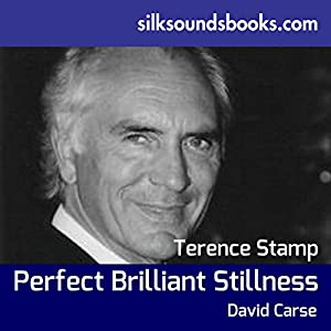 Perfect Brilliant Stillness Audiobook