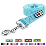Pawtitas Pet / Puppy Reflective Dog Leash Extra Small / Small 6 ft. Teal
