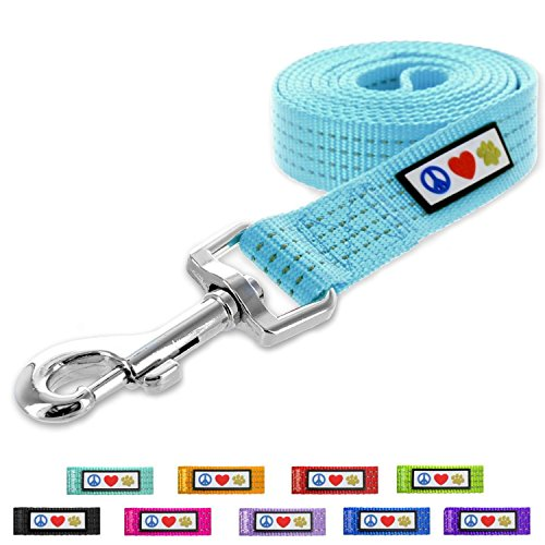 Pawtitas Pet / Puppy Reflective Dog Leash Extra Small / Small 6 ft. Teal by Pawtitas