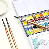 Transon Round Watercolor Detail Paint Brushes