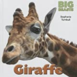 Giraffe, Stephanie Turnbull, 1599208342