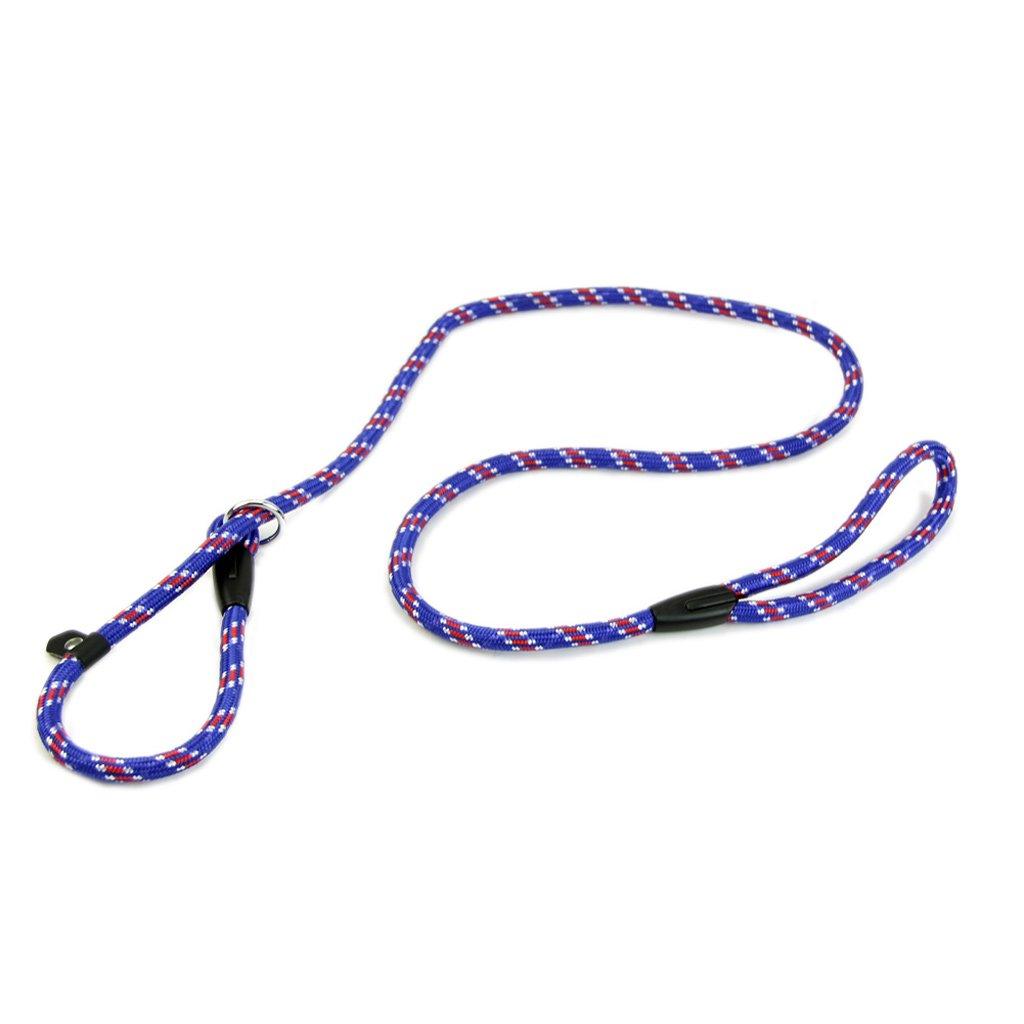 Pet Chain Cesar Millan Dog Leash Shoresu Whisperer Slip Training Correction Lead and Collar Style 135 cm Blue