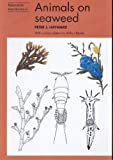 img - for Animals on Seaweed (Naturalists' Handbooks) book / textbook / text book