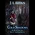 Cold Shadows (Ellie Jordan, Ghost Trapper Book 2)