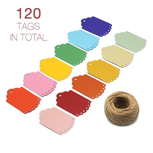 ZapFirst 120 PCs Dots Hollow Shaped Rectangular Paper Gift Tags with Free 120 Feet Hemp Rope Jute Twine (Assorted colors)