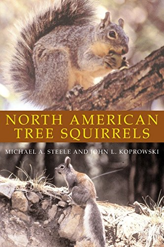 North American Tree Squirrels (Best Science Fair Projects Of All Time)
