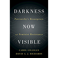 Darkness Now Visible: Patriarchy's Resurgence and Feminist Resistance (English Edition)