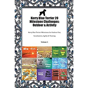 Kerry Blue Terrier 20 Milestone Challenges: Outdoor & Activity Kerry Blue Terrier Milestones for Outdoor Fun, Socialization, Agility & Training Volume 1 1