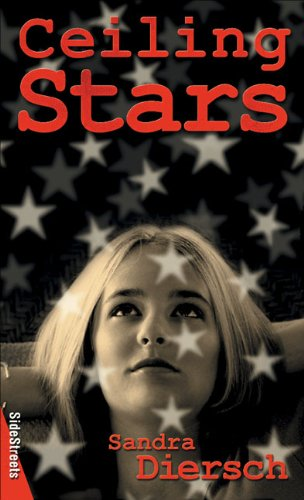 book cover of Ceiling Stars