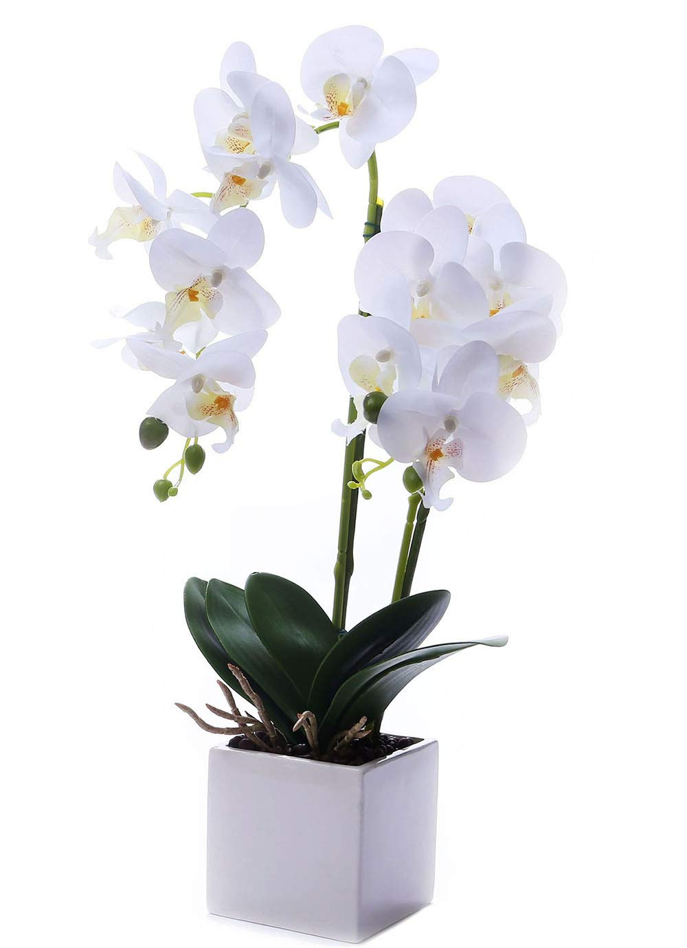 LEEMAN Artificial Lifelike Real Touch Flowers Arrangement Phalaenopsis Bonsai Orchid Miniascape Home Decoration (White 535)