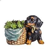 Lovely Miniature Resin Cartoon Shepherd Rottweiler Dog Weave Basket Cacti Micro Landscape Succulent Plants Flowers Pot Tiny Creative Garden Pastoral Flowerpot Succulent Decorative Planter Cute Gift