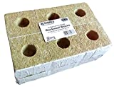 12 Rockwool blocks for Hydroponic system. bored for placing of jiffy pellets (4 inch)