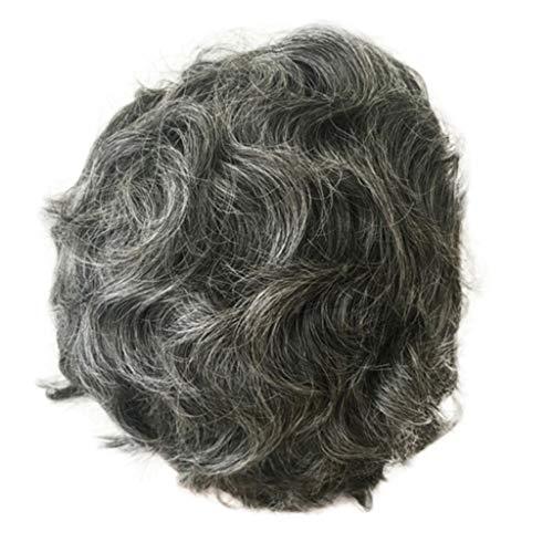 VICCKI Cosplay Wig Party Wigs Grandma Wig Natural Hair Wigs Natural Hair Wigs