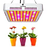 300W LED Plant Grow Lights, CANAGROW Full Spectrum LED Grow Lights for Indoor Plants, Hydroponic, Greenhouse, Vegetables, Flowers All Growing Stage
