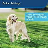 PetSafe Stubborn Dog Receiver Collar, In-Ground