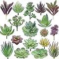 Miltonson Artificial Succulent Plants - 18 Pack - Premium Fake Plants - Double Flocked Succulents - Realistic Textured Cactus - Face Succulent Plants - Mini Feaux Succulent Plants - Face Plant Decor