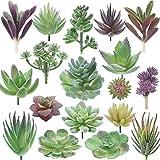 Miltonson Artificial Succulent Plants - 18 Pack