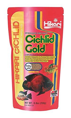 Hikari Cichlid Gold Floating Baby Pellets for Pets, 8.8-Ounce