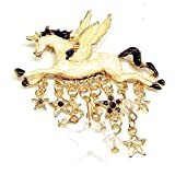 Oldlila Unicorn Pegasus Star Crystal Tassel Broach Brooch Pin for Unisex