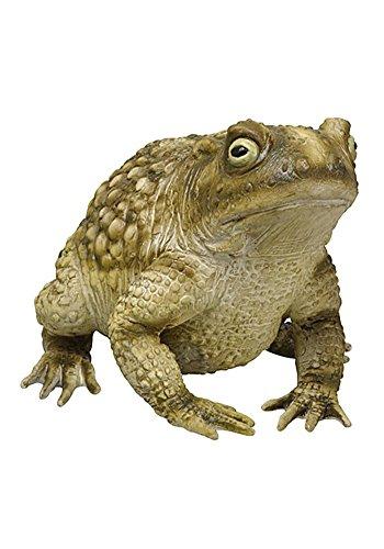 Giant Foam Latex Toad Frog Garden (Giant Garden Frog)