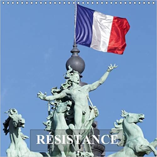 Téléchargement Resistance 2016: Face aux Agressions et Defis de la Vie, Quelques Conseils Pour Faire Front pdf, epub ebook