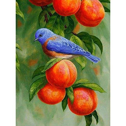 AIRDEA DIY 5D Diamond Painting by Number Kit, Full Drill Peach and Bird Rhinestone Embroidery Cross Stitch Arts Craft for Canvas Wall Decor