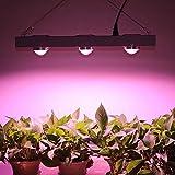 Mrhua 600W COB LED Grow Light, Professional Full